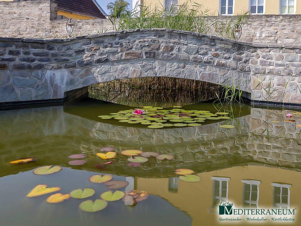 Gartengestaltung_Einblicke_Mediterraneum_3.jpg