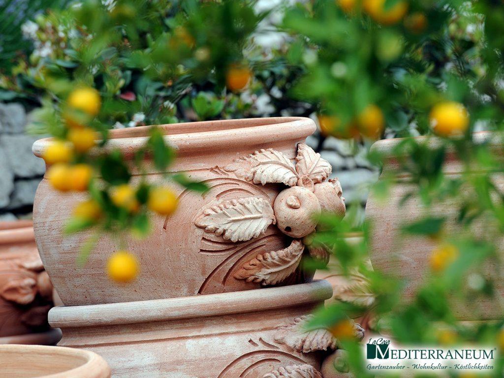 Gartenplanung_Mediterraneum_14